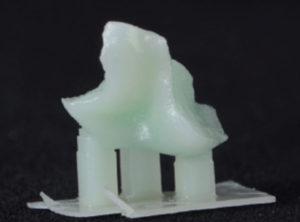 Digital Dentistry Printed Pattern